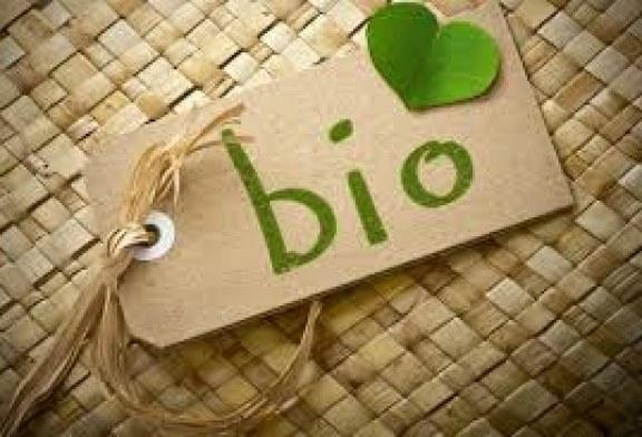 Биопроизводители искат отделен бюджет по мярка 121 Модернизация на стопанствата