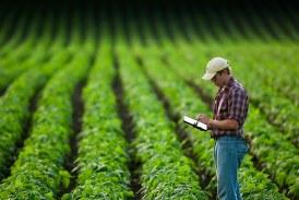 Какво ще се случи с проверките на земеделските стопани по време на извънредното положение