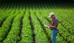 земеделец