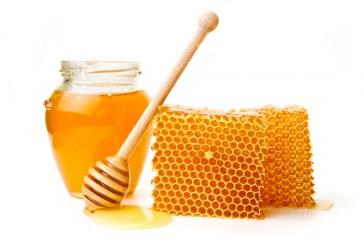 Китай иска да купува български пчелен мед