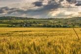 Новият Закон за земеделските земи се отлага поне с година
