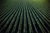 Как земеделието може да стане полезен за климата сектор