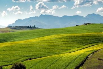До 5% ще е ръстът в цената на земеделската земя