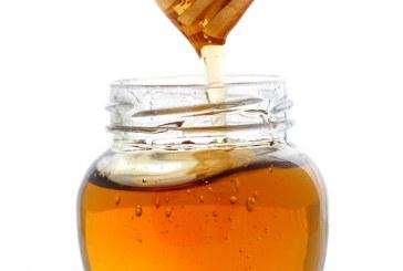 Обявено е второ класиране по мярка Д от новата Пчеларска програма
