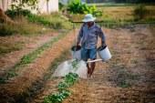 ДФЗ изплати още средства за биоземеделие