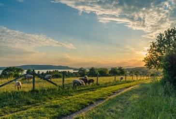 В Свищов дискутираха проблемите в земеделието