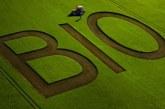 Ще има ли нов прием по Мярка 11 Биологично земеделие
