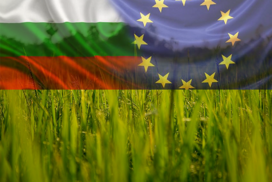 100 милиона евро от ПРСР ще бъдат отделени за инфраструктура през 2018 г.