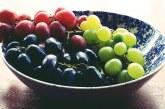 Представят в Плевен най-подходящите за отглеждане у нас десертни и винени сортове лози