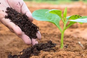 Предимства и приложение на биотор