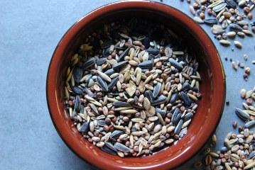 Предсеитбено обеззаразяване на семена от житни култури