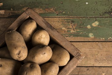 Временно съхранение на някои зеленчуци