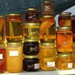 Международен панаир ще събере във Варна пчелари от пет държави