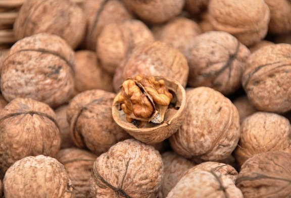 Орехите – хитът на XXI век