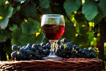 Декларации за реколтата от грозде се подават до днес