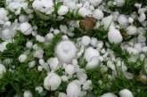 Министър Танева: Над 92 хил. декара със зърнени култури са поразени от градушките