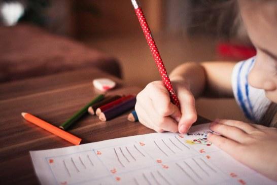 Законови промени налагат подаване на нови заявления по Училищните схеми