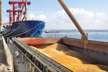 Износът на зърнени култури замря през изминалата седмица
