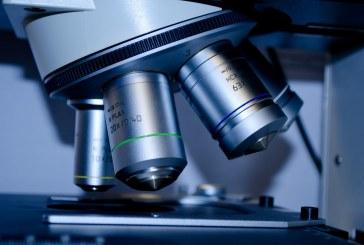 Какво показаха резултатите от пробите за чума по овцете и козите