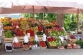 Остават високи цените на кайсии в Пазарджик