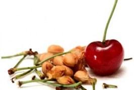 Какви са ползите от яденето на череши