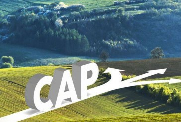 Какво тревожи специалистите в ЕС по отношение на субсидиите по ОСП