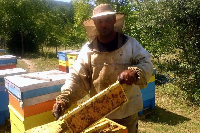 Аз-избирам-БИО-пчелин-Свилен-Ангелов-1