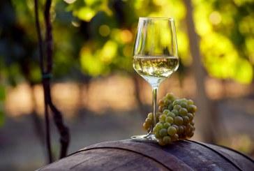 Провеждането на политиката в лозаро-винарския сектор ще се гарантира с нов Закон за виното и спиртните напитки