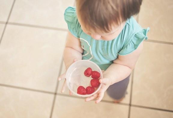 Злоупотребяват ли по схемите за училищен плод и мляко