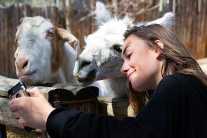 жена с коза и лама