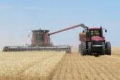 Рязък спад в добивите на зърно