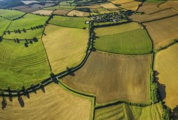 Общински ниви ще бъдат продадени на публичен търг
