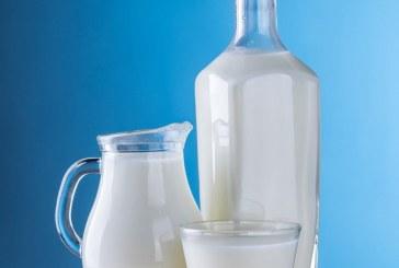 Дания е производител номер едно на мляко