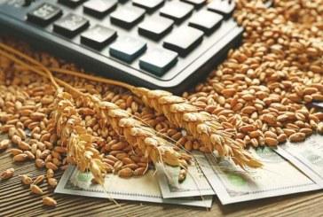 Как се промени цената на пшеницата