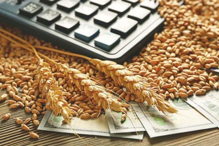 пшеница върху калкулатор и пари