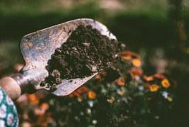 Какво показа анализът на почвите у нас