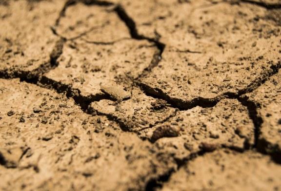 Погубваме устойчивостта на почвите