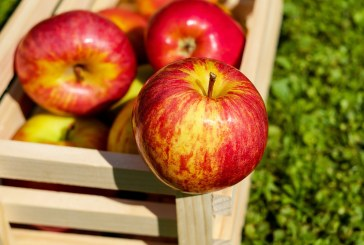 Най-значително е поскъпването при ябълките през първата седмица на юли