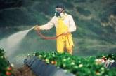 Нова Зеландия преоцени опасността от редица химикали