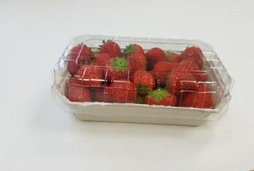 Формира се тенденция към биоразградимите опаковки