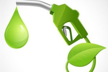 Европа избра биогоривата от второ поколение