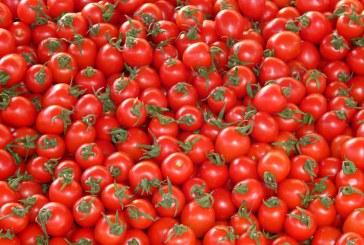Със 7 % скочи износът на домати от Азербайджан