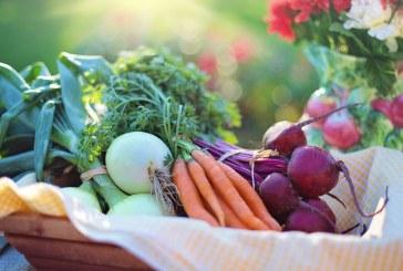 Заявления за застраховане на селскостопанска продукция се приемат от днес