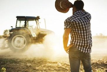 Мъжете в земеделието взимат повече пари от жените