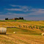 Колко пари губим, ако не използваме земеделските си земи