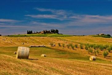 Накъде отива българското земеделие