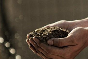 Как почвени бактерии намаляват парниковите газове