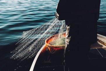 Прекомерният риболов вреди на състоянието на Черно море