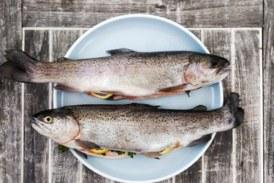БАБХ започна засилени проверки на предлаганата риба преди Никулден