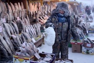 Най-студеният фермерски пазар